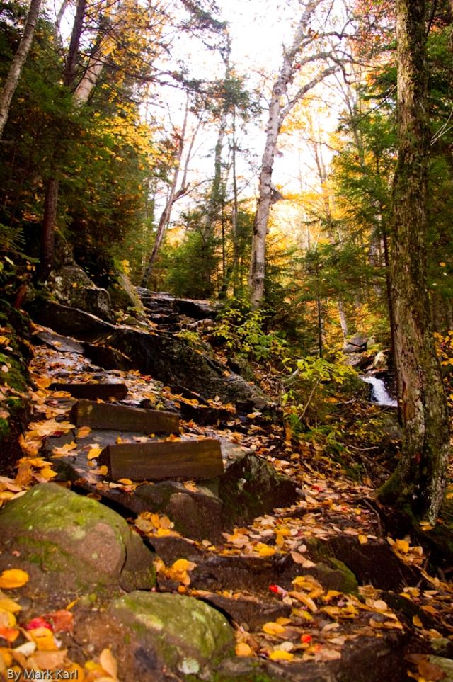 Steps on Beaver Brook Trail near the Cascades