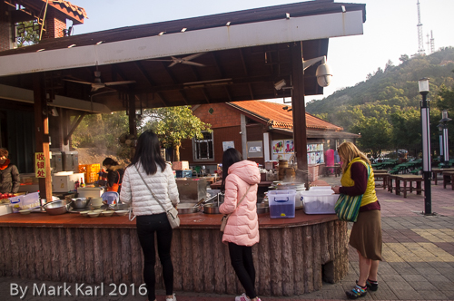 Qingyan Mt Hike January 9 2016-14