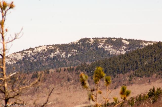 View of Black Mt.